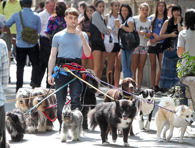 Daniel Radcliffe Çok mu Sıkılmış?