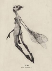 Audrey-Benjaminsen-Fairy3-CA