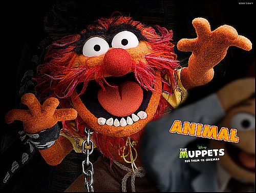 Muppet Show'dan Dramatik (!) Bir Şarkı Denemesi
